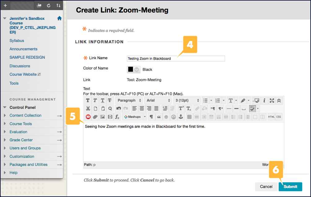 Screenshot showing the options for a Zoom meeting scheduled in Blackboard